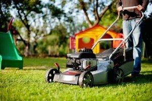 Ideale Kombination für optimale Rasenpflege: Rasenmäher und Motorsense