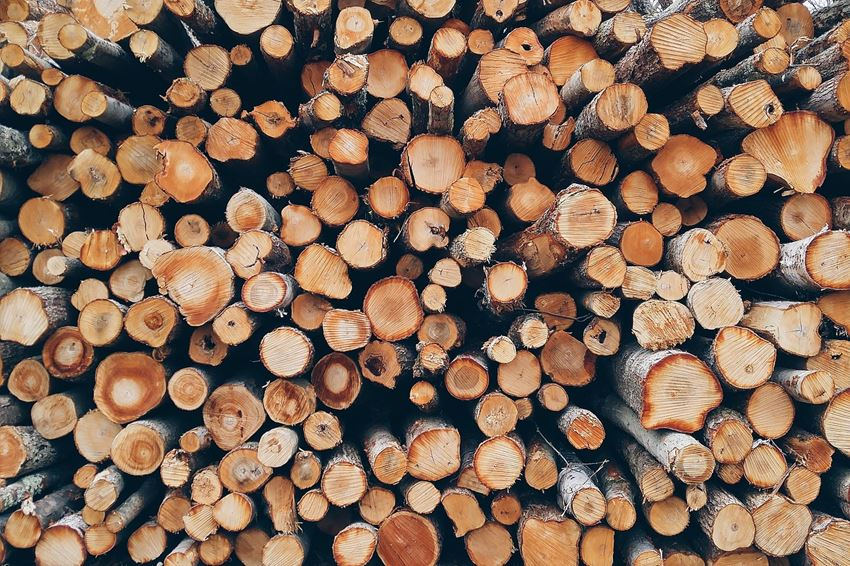 Sauber geschnittenes Brennholz auf einem Haufen